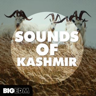 图片[1]-[KSHMR风格采样包+Sylenth1/Serum/Spire预置]Big EDM: Sounds Of Kashmir-萌未来