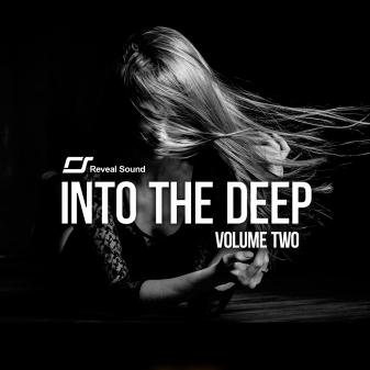 Reveal Sound - Into The Deep Vol.2 (MIDI, WAV, SPIRE)